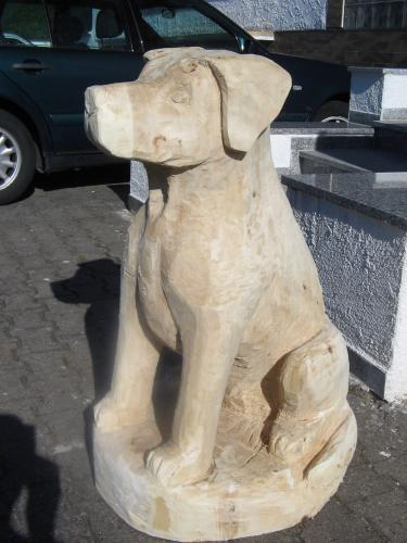 Hund_03