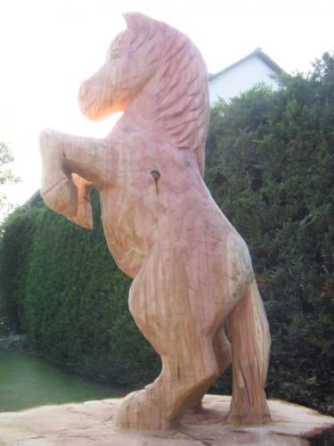 Pferd_03